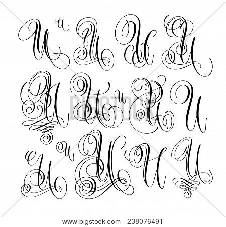 Calligraphy Lettering Script Font U Set Hand Written Signature Letter Design Vector Illustration
