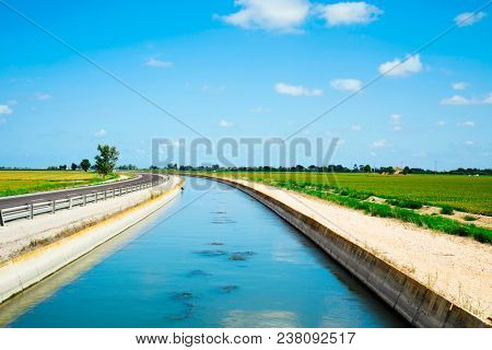 view of a water channel to irrigate the paddy fields in the Ebro Delta, in Catalonia, Spain
