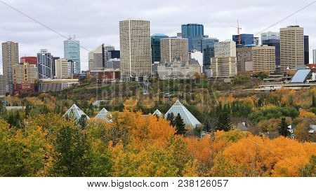 The Edmonton, Canada City Center With Colorful Aspen In Foreground