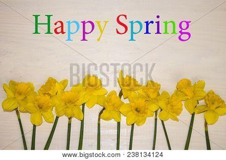 Spring Flowers Of Blooming Spring. Happy Spring. Natural Spring Flower, Closeup Of Spring Flowers Bl