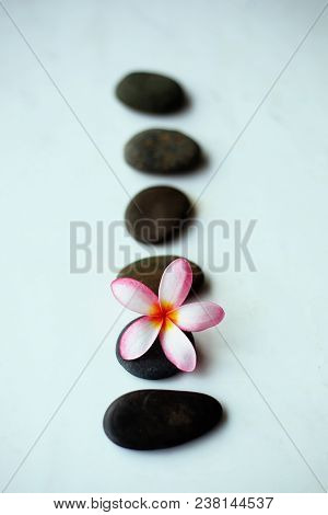 Spa Stones And Pink Flower Isolated On Wooden.