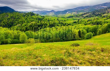 Carpathian Rural Area In Springtime. Lovely Landscape Of Mountainous Countryside