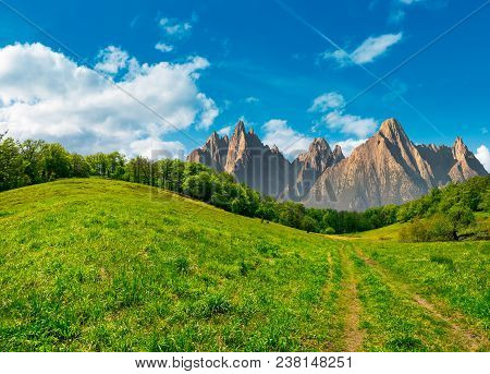 Composite Summer Landscape. Path Through The Forest On Grassy Hillside In High Tatras. Beautiful Sum