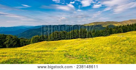 Gorgeous Weather Over Grassy Slopes Of Carpathians. Wonderful Mountain Landscape With Beech Forests