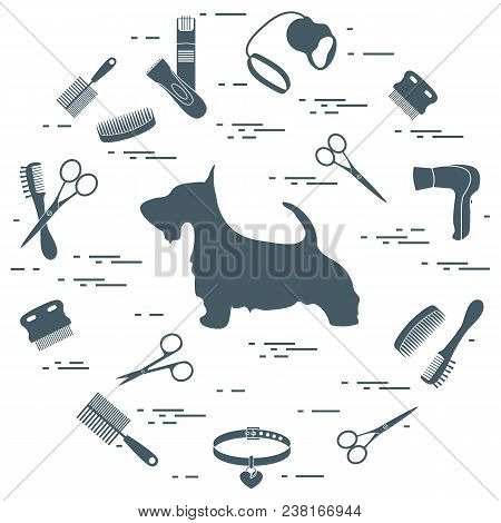 Scotch Terrier Silhouette, Combs, Collar, Leash, Razor, Hair Dryer, Scissors Arranged In A Circle. H
