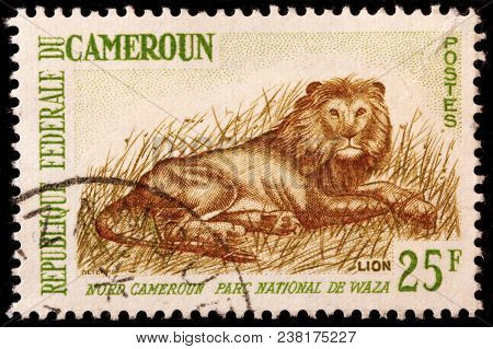 Luga, Russia - October 7, 2017: A Stamp Printed By Cameroon Shows Lion In National Park Waza, Circa
