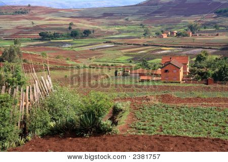 Typical Rural Madagascar View