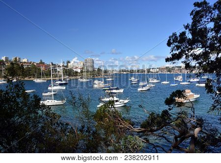 Manly Buildings Skyline From Wellings Reserve. Many Yachts In North Harbour At Fourty Baskets Beach.
