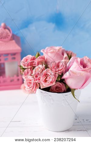 Tender Ink Roses Flowers  In White Pot And Pink Decorative Lantern Against  Blue Wall. Floral Still