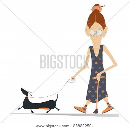 Cartoon Senior Woman Walks With A Walking Stick And The Dog Illustration Isolated. Old Woman, Dog An