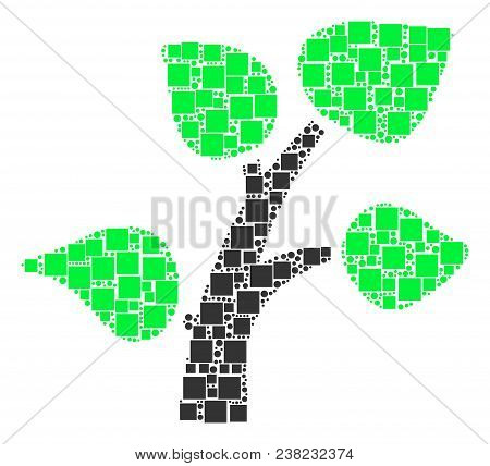 Flora Plant Mosaic Icon Of Rectangles And Circles In Various Sizes. Vector Items Are Organized Into