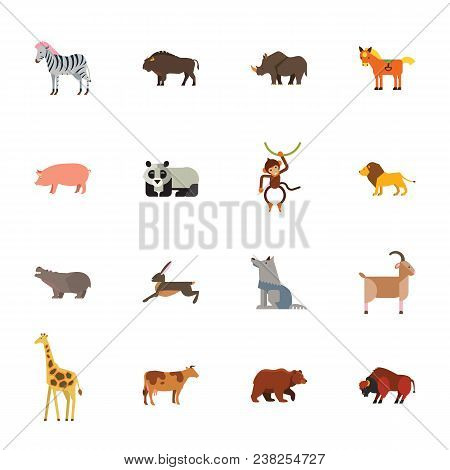 Animal Icon Set. Colorful Flat Illustration. Zoo, Species, Wildlife. Fauna Concept. For Topics Like