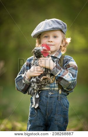 Small Boy Portrait With Chicken.