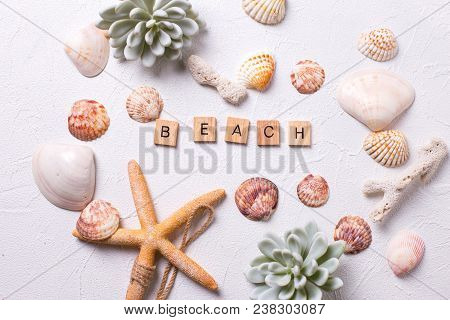 Summer Background. Marine  Decorations  And Word Beach On White Textured  Background. Sea Star, Shel