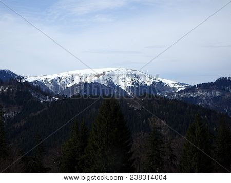 Sunny Day In The Mountains - Beginning Of Spring - Nature, Ploska - Greater Fatra - Slovakia