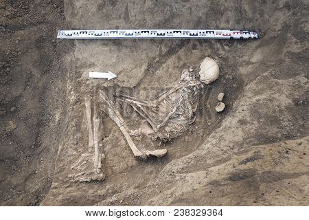 Archaeological Excavations And Finds (bones Of A Skeleton In A Human Burial),  Working Tool, Ruler,
