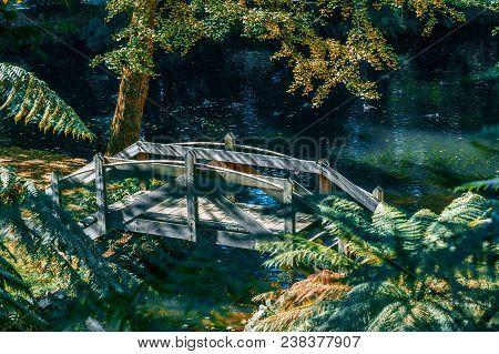 Small Wooden Footbridge Across Pond In Autumn