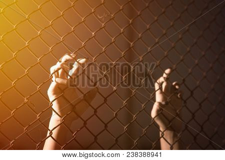 Hand Holding On Chain Link Fence. Hand Holding Chain Fence Concept. Hand Holding Chain Fence Prison.