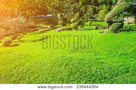 Sunlight Shines On The Green Lawn In The Quiet Garden, Landscaped Formal Garden, Front Yard With Gar