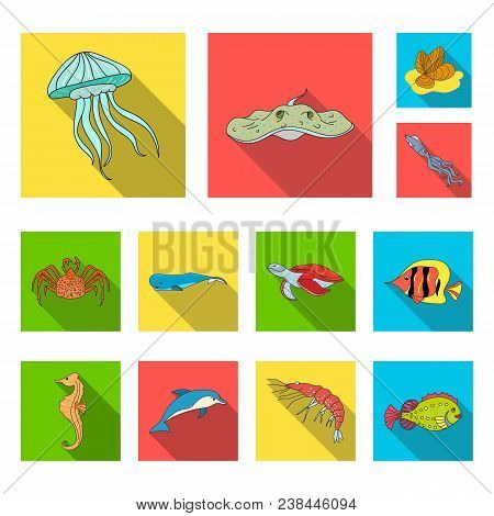 A Variety Of Marine Animals Flat Icons In Set Collection For Design. Fish And Shellfish Vector Symbo