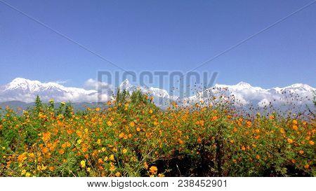 Annapurna Himal From Peace Pagoda, Pokhara Nepal