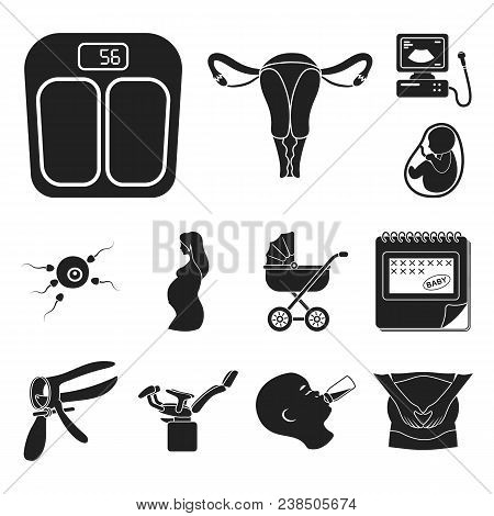 Woman And Pregnancy Black Icons In Set Collection For Design. Gynecology And Equipment Vector Symbol