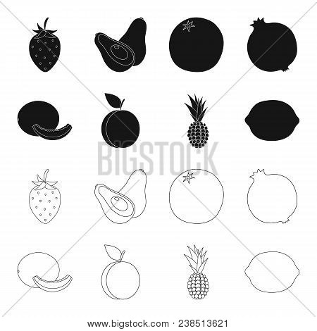 Melon, Plum, Pineapple, Lemon.fruits Set Collection Icons In Black, Outline Style Vector Symbol Stoc