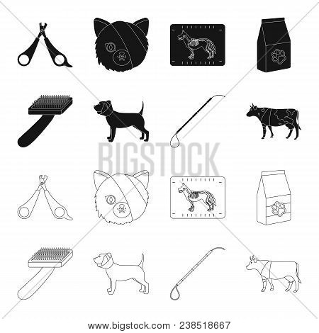 Dog, Cow, Cattle, Pet .vet Clinic Set Collection Icons In Black, Outline Style Vector Symbol Stock I