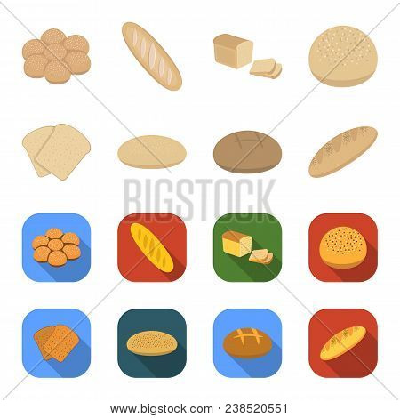 Toast, Pizza Stock, Ruffed Loaf, Round Rye.bread Set Collection Icons In Cartoon, Flat Style Vector