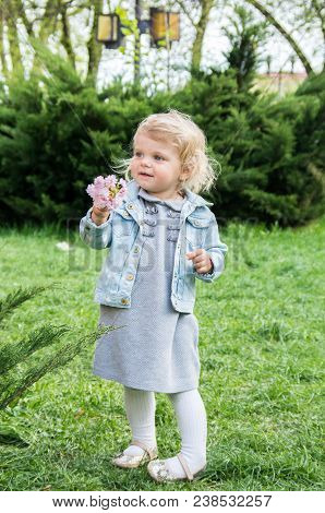 Small Charming Blonde Holds A Twig Of Cherry Blossoms