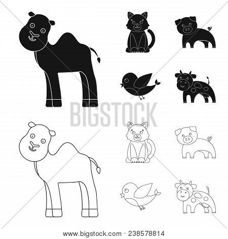 An Unrealistic Black, Outline Animal Icons In Set Collection For Design. Toy Animals Vector Symbol S
