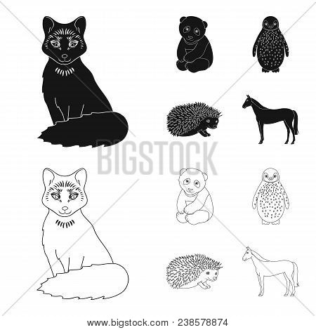 Fox, Panda, Hedgehog, Penguin And Other Animals.animals Set Collection Icons In Black, Outline Style