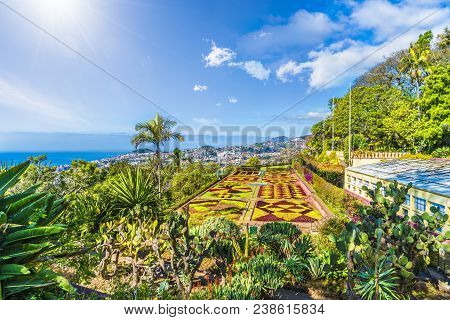 Tropical Botanical Gardens In Funchal, Capital Of  Madeira Island, Portugal