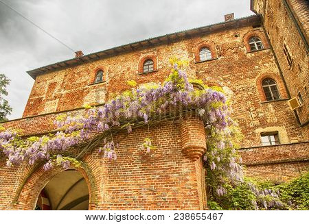 Renaissance Catle With Flowers Under Grey Sky, Horizontal Image