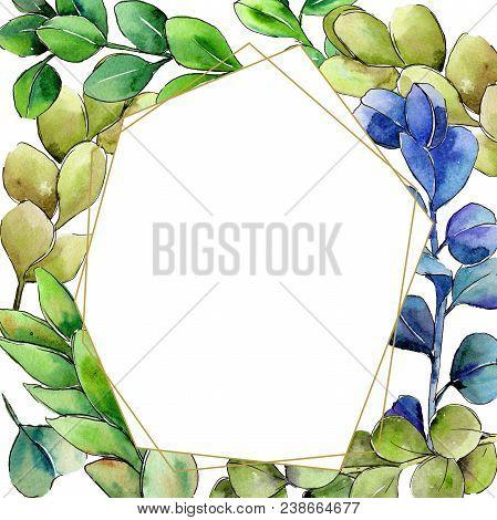 Green Boxwood Leaf. Leaf Plant Botanical Garden Floral Foliage. Aquarelle Leaf For Background, Textu