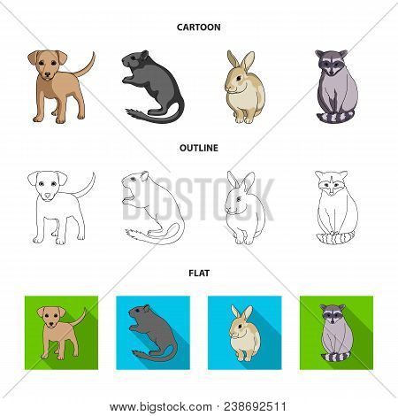 Puppy, Rodent, Rabbit And Other Animal Species.animals Set Collection Icons In Cartoon, Outline, Fla