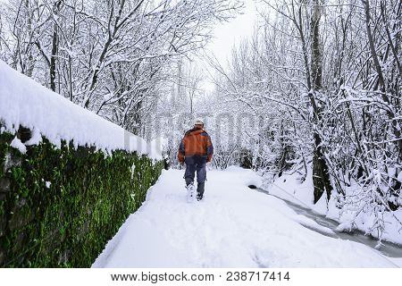 healthy and relaxing winter walk ;nature is very good and theraphy poster