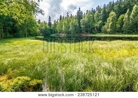 Grass Overgrown Pond With A Dramatic Cloudy Sky. The Black Pond In National Nature Reserve Adrspach-