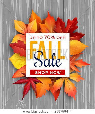 Autumn Sale Poster Of Fall Foliage Bunch On Wooden Background For Seasonal Shop Discount Promo. Vect