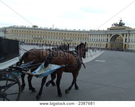 Horses In Dvortsovaya, St Petersburg, Russia, Heading For The Hermitage Building
