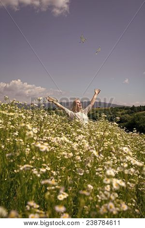 Summer Vacation, Wanderlust, Spa. Chamomile Flower, Nature And Environment. Sensual Woman In Blossom