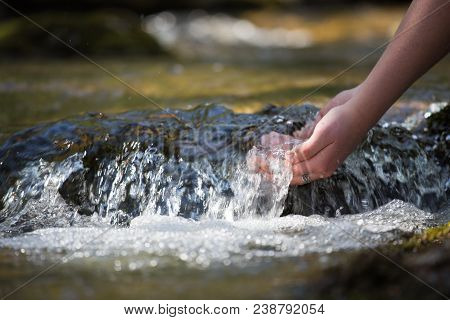 The Forest Brook, The Girl Washed Her Hands In Clean Water And Enjoys Her Freshness, The Natural Ben