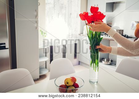 Woman Puts Red Flowers In Vase. Young Housewife Taking Care Of Coziness In Kitchen. Modern Kitchen D