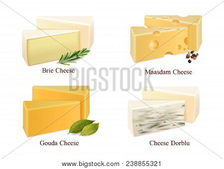 Set Of Cheese Kinds In Pieces Brie, Gouda, Dorblu And Maasdam With Spices Isolated Vector Illustrati