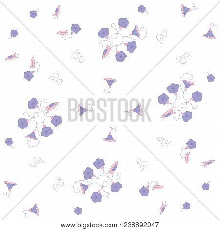 Stylized Seamless Pattern From The Blue Wild Flowers Bindweeds On White