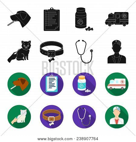 Collar, Bone, Cat, Haircut .vet Clinic Set Collection Icons In Black, Flet Style Vector Symbol Stock