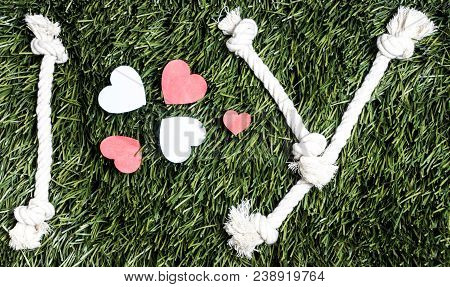 I And Y Letters And Three Paper Heart Cut Outs On Grass
