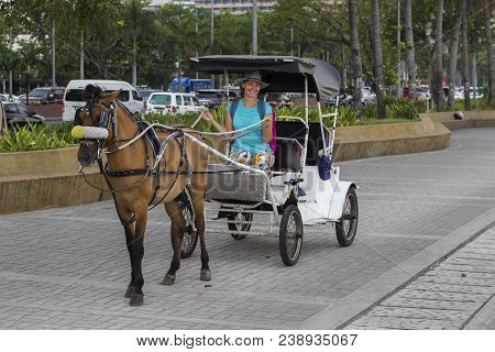 Girl In Hat On Coach With Brown Horse. Tourist Attraction On Street. Vintage Coach With Horse. Cute