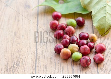 Close up fresh coffee beans on wood table,red fruit with caffeine addiction. poster