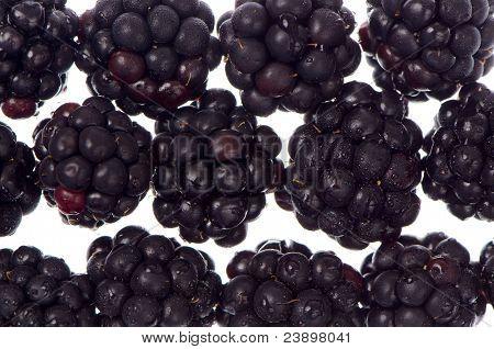 Fundo de Blackberry